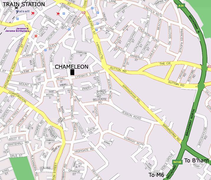 Chameleon Gallery